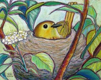 """9x12 Original Bird Painting - Oil Pastels- """"Yellow Warbler on Nest"""" - Spring - Bird Nest- Not a Print - bird art -songbird -nursery"""
