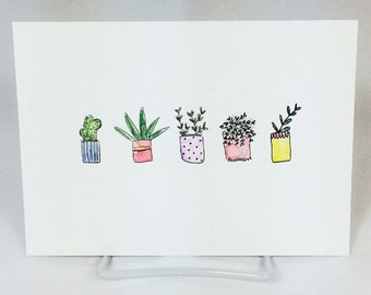 SALE!!! Plant watercolour illustration // succulent illustration