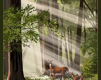Port Townsend, Washington - Deer and Fawns (Art Prints available in multiple sizes)
