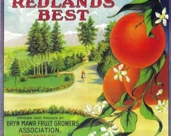 Redlands Best Orange Label (Art Prints available in multiple sizes)