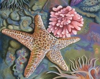 Bodega Bay, California - Tidepool (Art Prints available in multiple sizes)