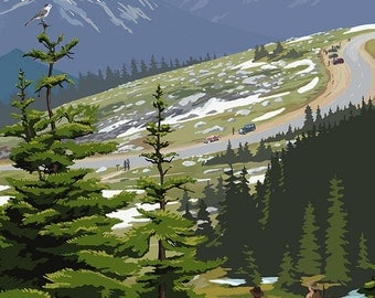 North Cascades, Washington - Trail Scene (Art Prints available in multiple sizes)