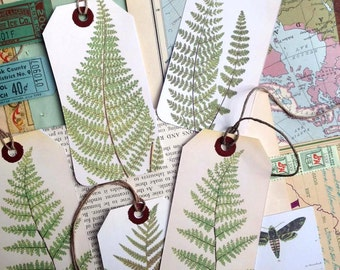 Fern gift tags (set of 5)