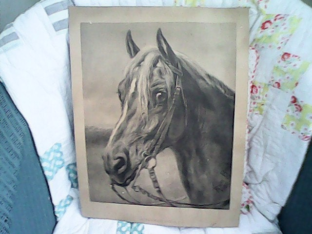 Norman Sire By Rosa Bonheur 1880 Original Lithograph Signed