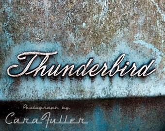 Blue Ford Thunderbird Emblem Photograph