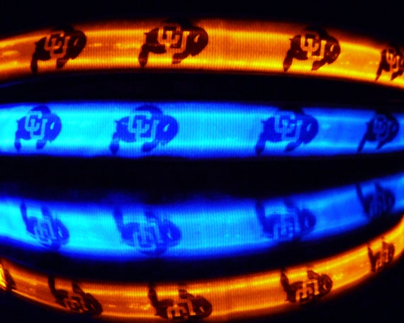 cu buffs led dog collar lighted pet collar glows in by. Black Bedroom Furniture Sets. Home Design Ideas