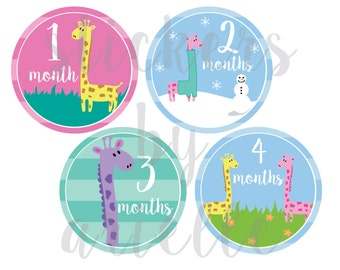 Month by Month Baby Girl Stickers - Giraffe