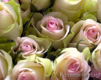 Spring Bouquet - Original Fine Art Photograph - Roses