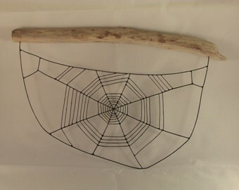 Spider web on driftwood
