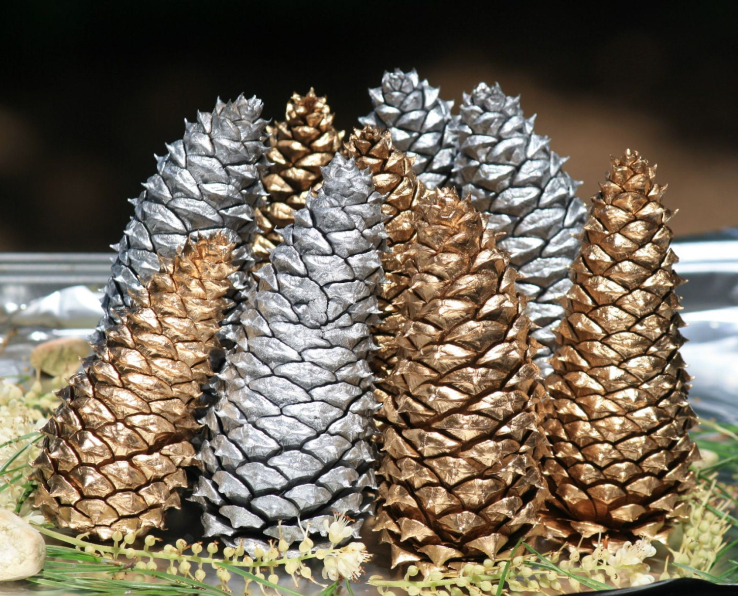Natural pine cones painted pine cones silver pine cones by for Large christmas pine cones