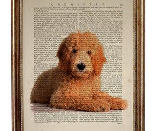 Valentines Day Decor, Goldendoodle Art, Goldendoodle Gift, Goldendoodle Dog Art Print Upcycled Dictionary Book page, Gift For Dog Lover
