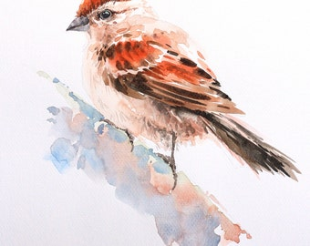 Bird  , Bird watercolor painting, watercolor, Art print size 8X11 inch for room décor and special gift  No.234