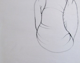 Original Charcoal Drawing, One Walnut 22x17