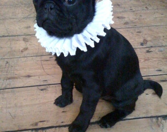 Small Dog Cat Pet Neck Ruff Custom Luxury Renaissance Faire Costume SCA Lace Trim Elizabethan