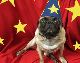 The Starry Wizard Hat with Yellow Stars and Moons: Dog Wizard Hat, Halloween Dog Hat, Halloween Costume, Sorceror Hat, Pug Hat, Oz, Xmas