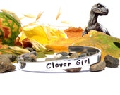 Jurassic Park Inspired Bracelet, Aluminium Cuff Jewelry, Hand Stamped, Customizable, Clever Girl