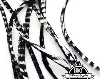 10 - Black / Metallic Silver - Goose - Biot - Feathers - Millinery