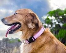 Pink Dog Collar - Pink + White Dot Dog Collar - Adjustable dog collar - girl dog collar - pink dog collar - polka dot dog collar