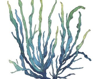 Blue and Green Seaweed Watercolor Painting Archival Art Print Nautical Art Hamptons Style