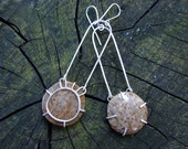 Petrified Palm Wood Modern Silver Dangle Earrings