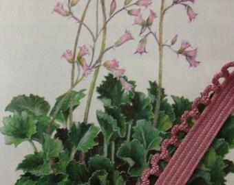 "5 yards 3/8"" width heather lingerie elastic with scalloped edge mauve elastic rose elastic pink elastic trim St"