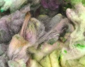 Hand Dyed Cormo COATED Wool Locks Spinning and Felting Fiber- Mossy River