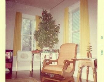 "Vintage Photo ""Christmas Day"" Tree Snapshot Photo Old Antique Photo Black & White Photograph Found Photo Paper Ephemera Vernacular - 177"