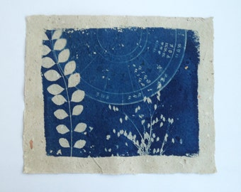 botanical print, cyanotype on handmade paper, pressed leaf art, secret life of my garden