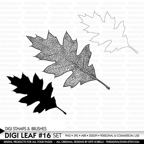 Digital Leaf No. 16 - Stamp and Brush Set - INSTANT DOWNLOAD - for Invites, Scrapbooking, Cards, Collage, Crafts and More