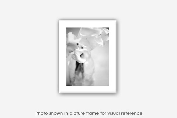 Still Life Photography, Calla Lilies, Dreamy Ethereal Art, Prints, Photos, Blank Photo Greeting Cards, High-Key Black and White Photography