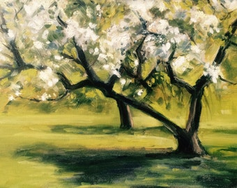 9x12 Apple Blossom Study