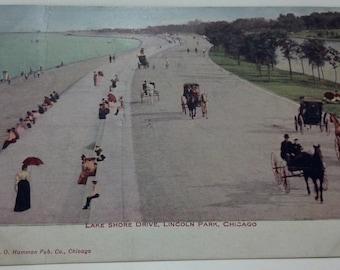 VO Hammon Pub. postcard #233 of Lake Shore Drive Chicago. Postmark 1909