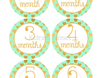 Mint & Gold Baby Month Stickers, Baby Girl Month Stickers, Baby Milestone Stickers, Milestone Stickers, Baby Month Stickers