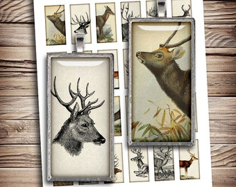 Woodland animals 1x2 inch Printable Rectangle Domino Images Deer Moose Digital Collage Sheet - Instant Download