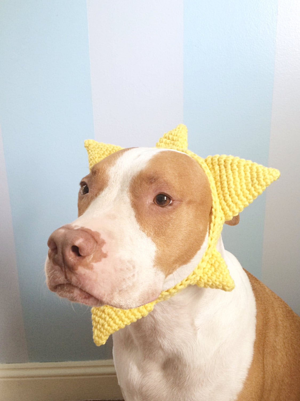 Sun Costume Headband Headband Dog Sun Costume