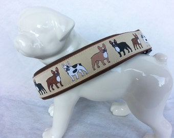 Neoprene padded dog Collar *french bulldog*