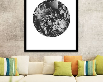 Art Succulent Printable, Succulent Digital Download, Succulent Decor, Succulent Art, Succulents Print, Black and White Photograph Prints