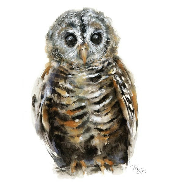 Owl watercolor - Owl Painting - Giclee Print - Home Wall Decor - Bird  Watercolor Illustration - Owl Watercolor Art Print