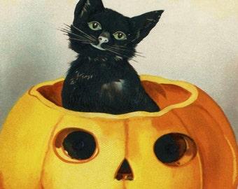 Black Cat in a Pumpkin Halloween Digital Download Vintage Printable 5x7 Art Commercial Use Scrapbooking Printables