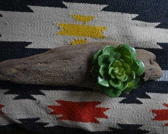 Driftwood Succulents: Faux Plants/planter/wood plant holder/wood planter/fake plants/greenery