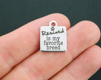 Rescue Dog Charm Polished Stainless Steel - Exclusive Line - Quantity Options  - BFS622