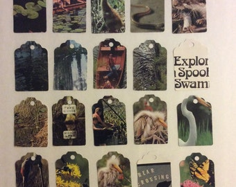 Die Cut Repurposed Upcycled Swamp Nature Book Tags (Set of 12)