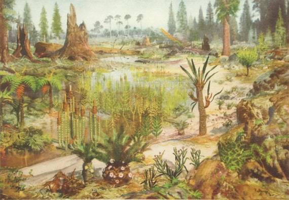 mesozoic era essay The paleozoic era which also means ancient life included the brachiopod, archaeocyathid, blastoid, trilobite and progymnosperm organisms the mesozoic era which also means the middle life included dinosaurs, conifers, cycads and the bird (ucmp, 2014.
