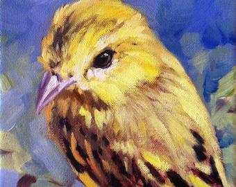 Mellow Yellow, Yellow Warbler bird oil painting