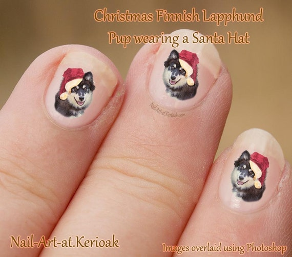 Christmas Finger Nail Art: Christmas Finnish Lapphund Nail Art Stickers, Wearing A