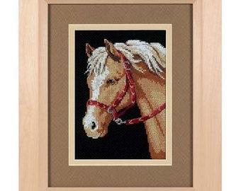 Dimensions Cross Stitch Kit - Favorite Pony
