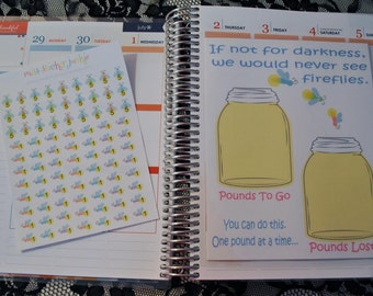 Weight Loss Dashboard for Erin Conden Life Planner Pounds Tracker Fireflies Stickers