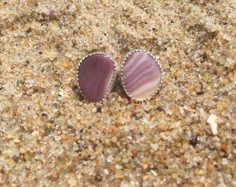 Purple shell earrings, stud earrings, beachy studs, shell studs, stud earrings