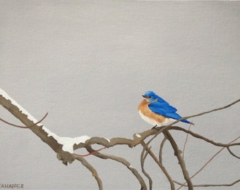 Bluebird - original oil painting 16x12