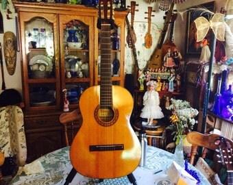 New Matsukawa Classical Guitar G 65